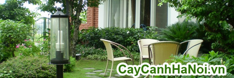 See our new collection garden furniture
